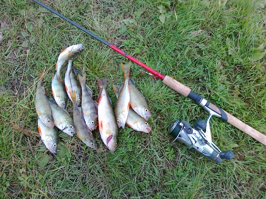 рыбалка на олхе иркутск