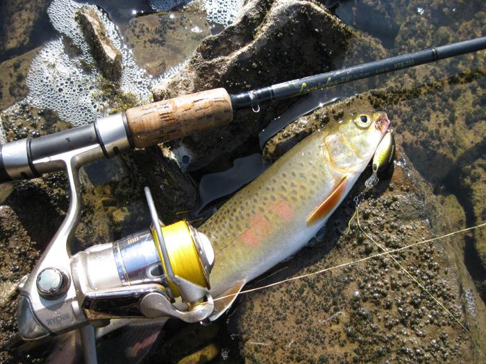воблеры для рыбалки на реке